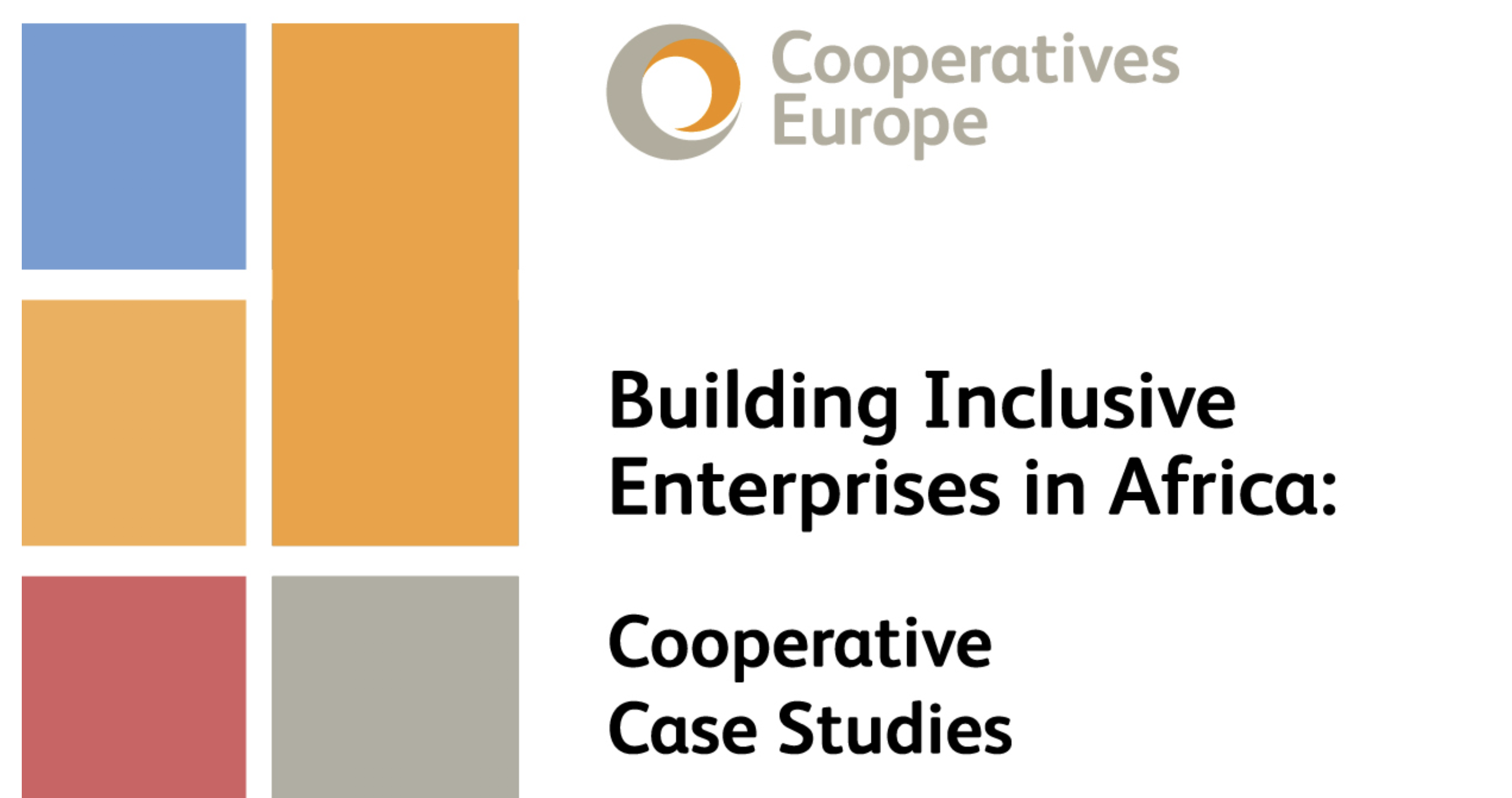 buiding inclusive enterprises in africa
